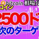 【ビットコイン 仮想通貨】次のターゲットは12500ドル突破【2020年8月15日】BTC、ビットコイン、XRP、リップル、仮想通貨、暗号資産、爆上げ、暴落
