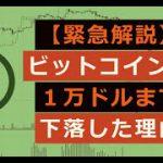 緊急解説:ビットコインが1万ドルまで下落した理由【ココスタ】