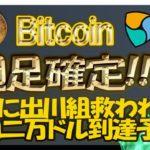 【最新BTC,NEMチャート分析】祝!ビットコイン爆上げ!月足確定次第で年内二万ドルが見えてきた!ネムを今の価格で売ってはいけない理由。